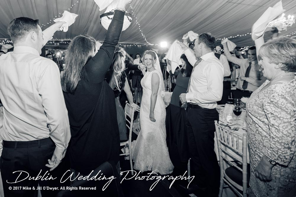 Tinakilly House Wedding photographer: Bride and Groom Reception Well Wishers