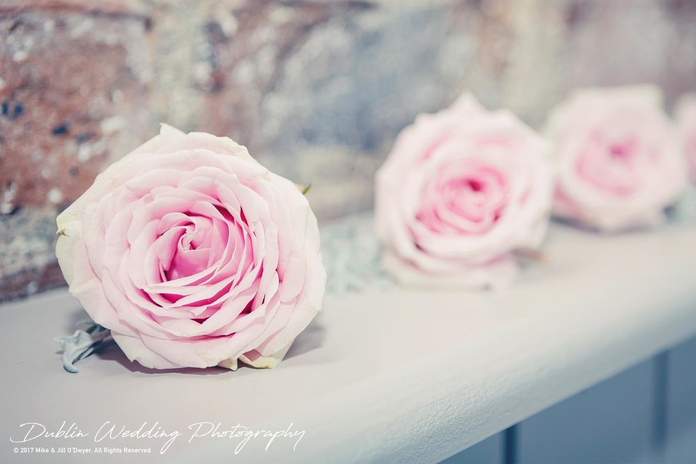 Bellingham Castle, Wedding Photographer, Louth, Dublin, Wedding Roses