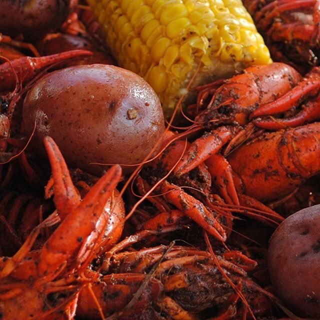 It's #crawfish #season we will start 1/19. Bring your own booze! 6.99 an lb. let's #hangout #houston #restaurant #katytx #delicious #food