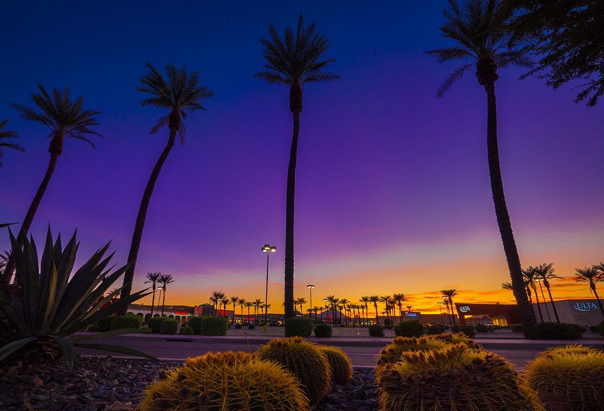 sun state arizona s 1 commercial landscape management company