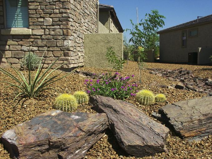 Table Mesa Boulders and Golden Barrels.JPG