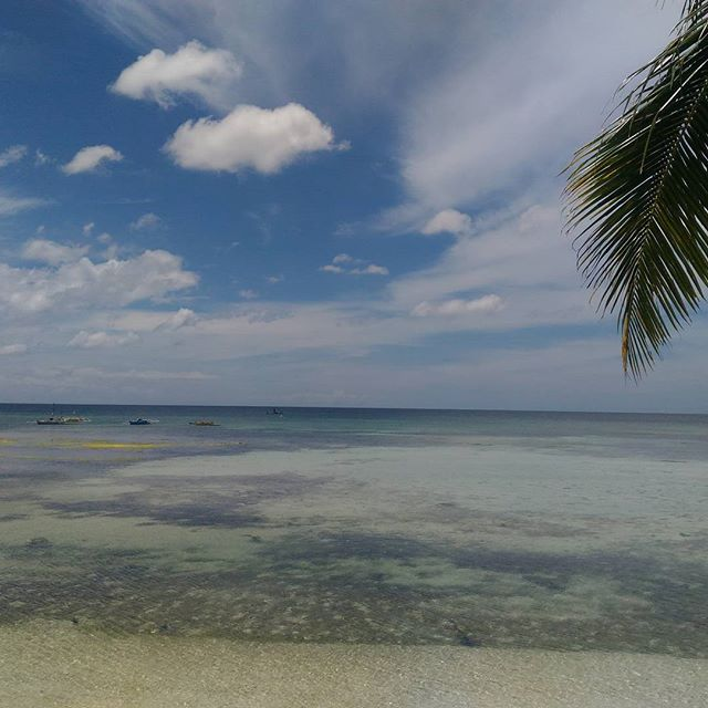 Office for the day!  www.mabuhaywebsites.com . . . . . #islandlife🌴 #digitalnomad #website #webdesign #squarespaceexpert #SEO #marketing #socialmedia #Philippines #Siquijor #aloha's #roughlife #mabuhaydesigns #beach #beachside #bluewater #holisticdesigner #culture #coffeetime #brownout #beautifulday #squarespace #designer