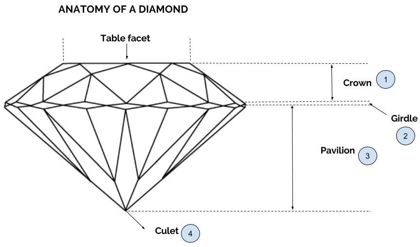 The Anatomy Of A Diamond Learn The Basics About The Crown Girdle