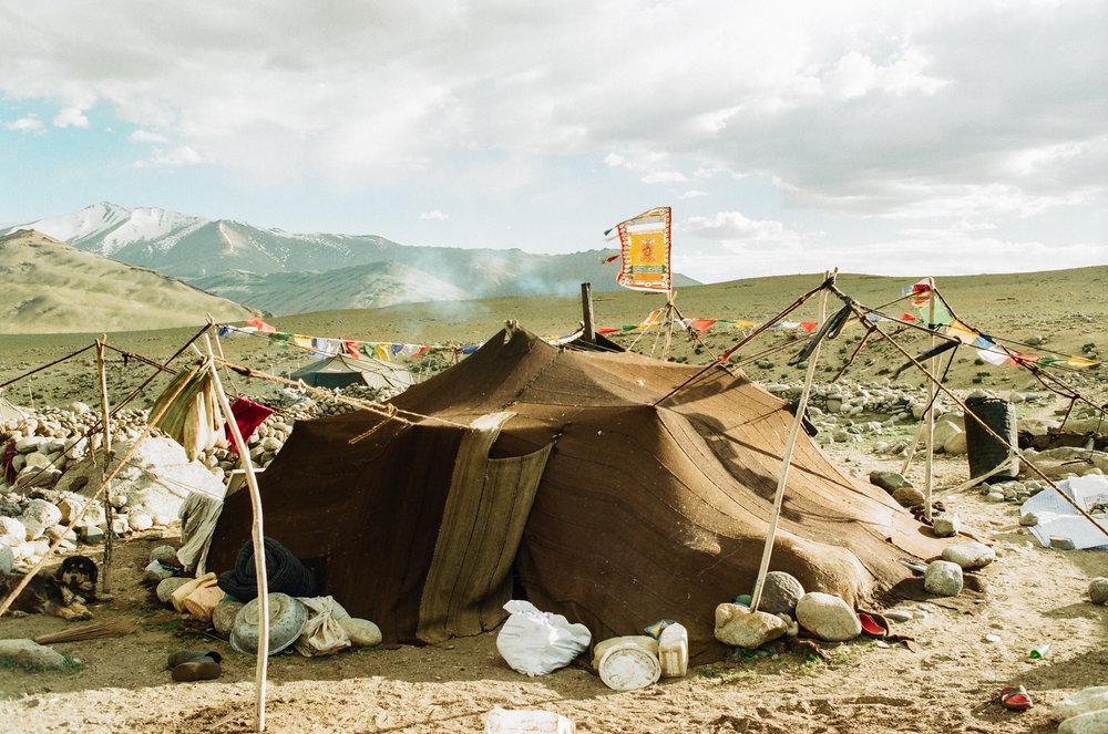 changpa-weaving-india10