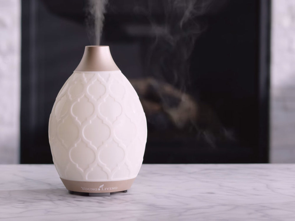 Oh how I love my Desert Mist Diffuser! Let me count the ways!