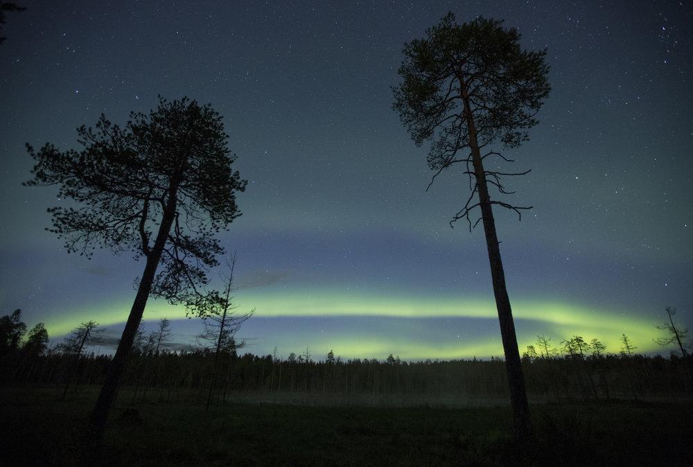 Aurora_IMG_1027.jpg