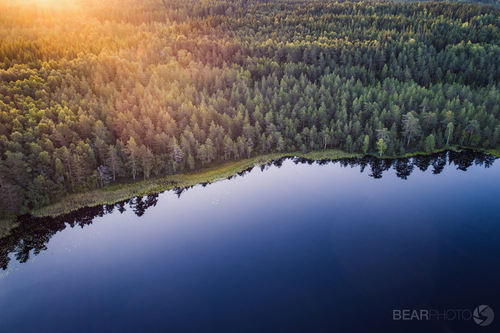 One of Finland's 188,000 pristine freshwater lakes in midsummer, from above.