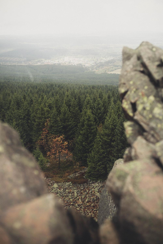 Harz'18-30.jpg