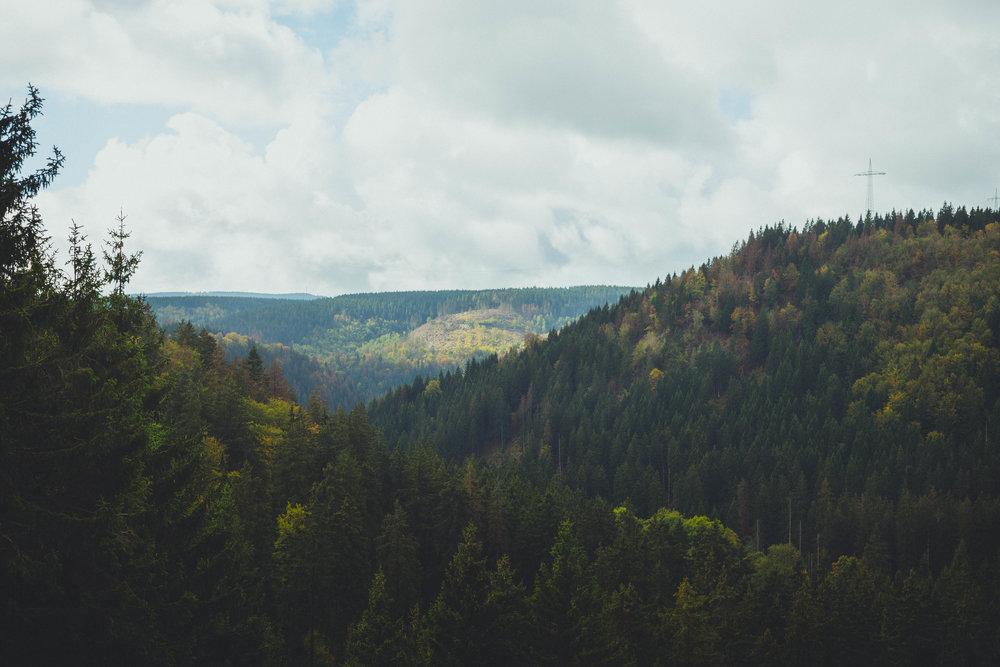 Harz'18-45.jpg