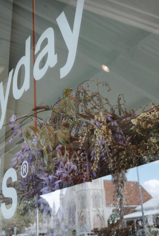Everyday Needs - Wisteria Window Installation
