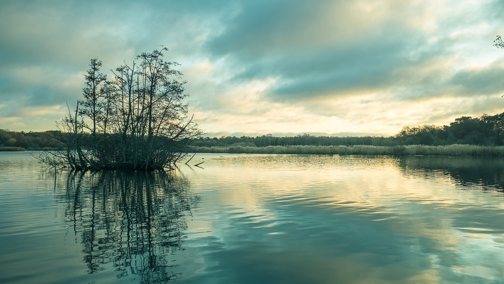 Fleet Pond, Hampshire, UK. Fuji X70