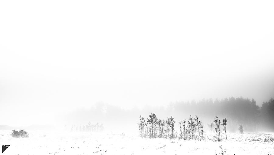 Snowy Landscape - Fuji X70