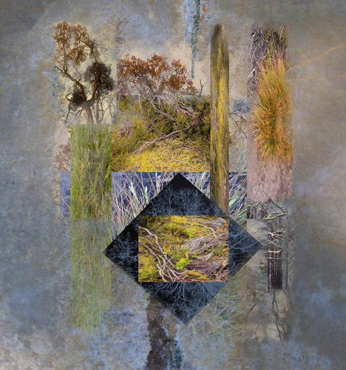 Montage, Inspired by Ilkley Moor by Sylvia Jackson