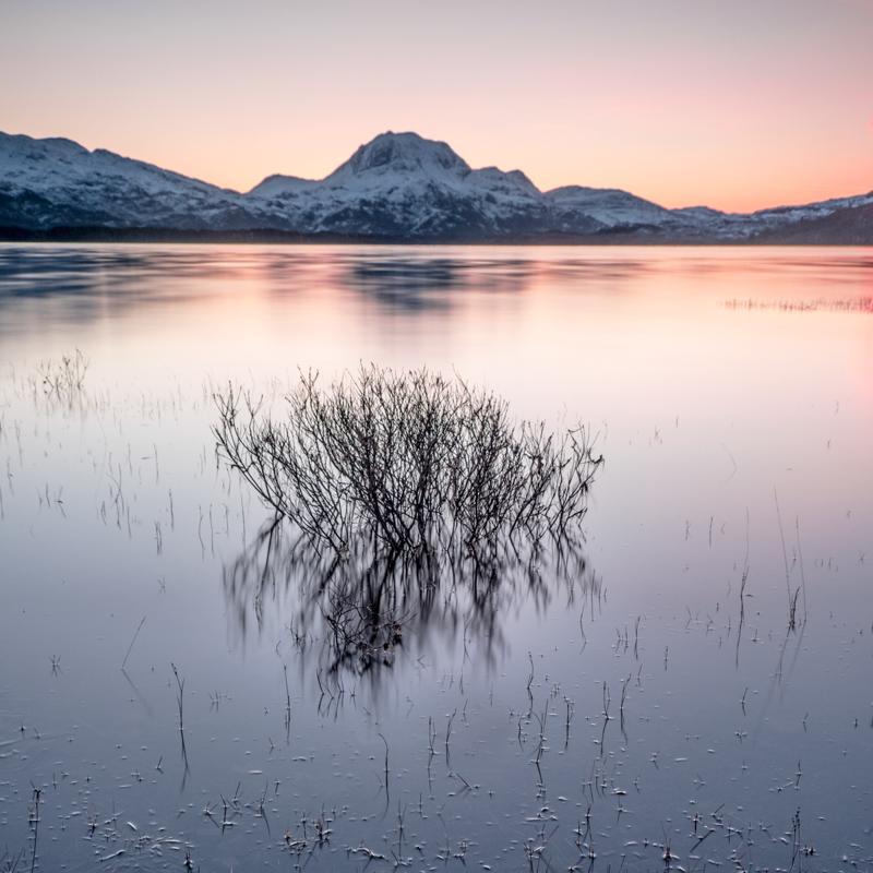 Calm Dawn
