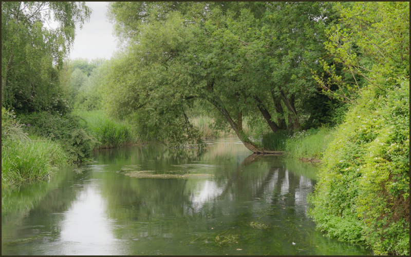 Harnum Water Meadows