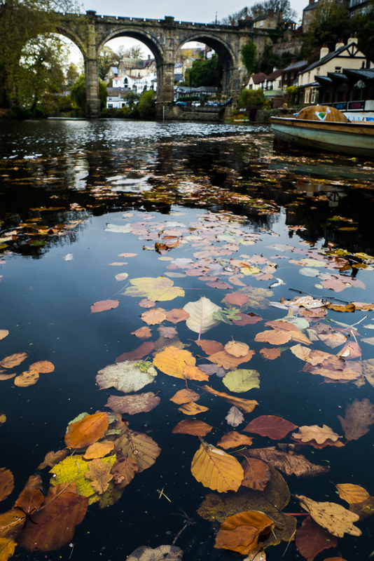 Autumn at Knaresborough