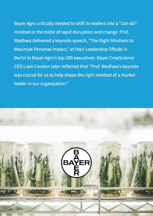 11 - bayer-vertical.jpg