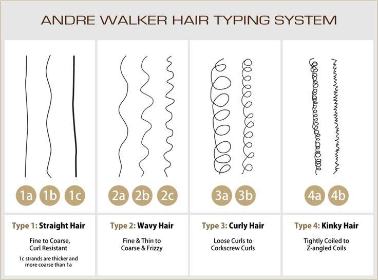 Andre-Walker-hair-typing-system.jpg