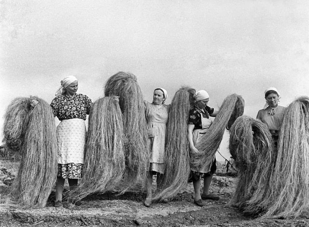 women holding cannabis fibers, sourced from Sativa Science Club.