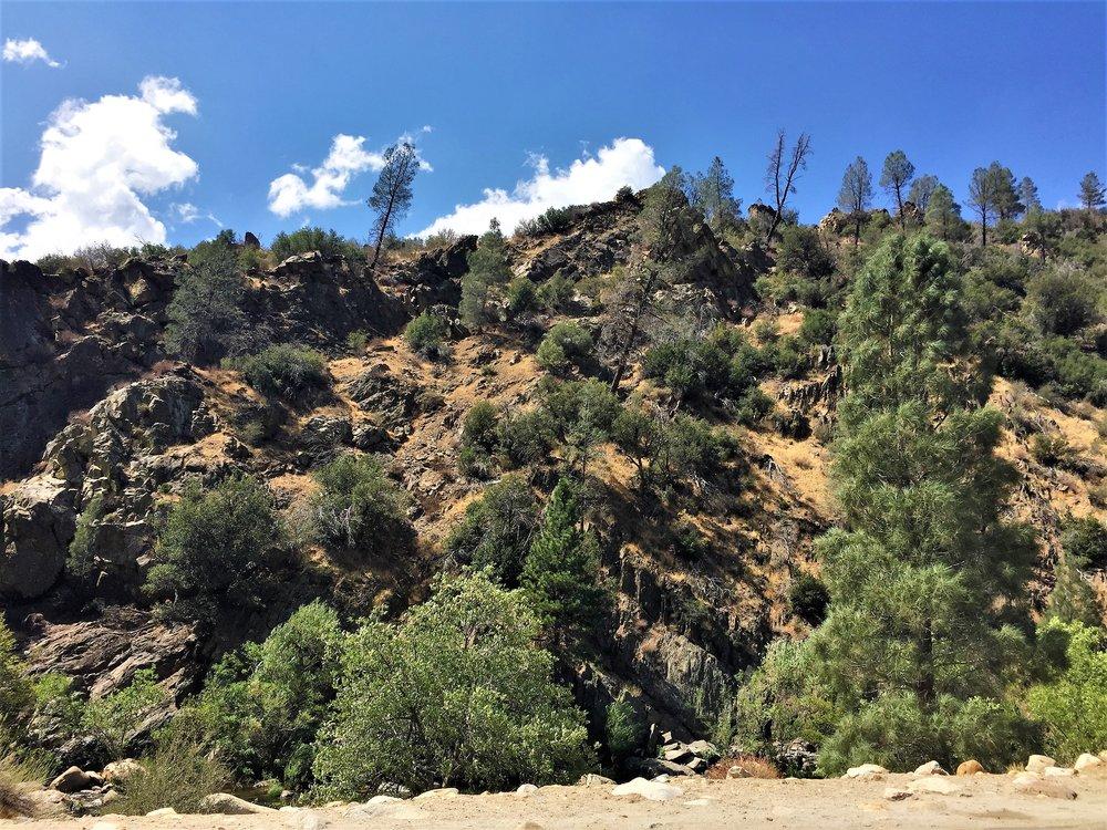 Towards Sequoia