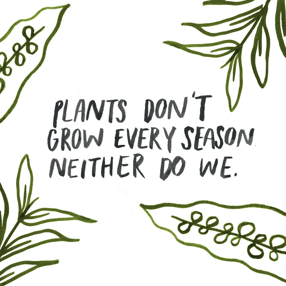 plants don't grow.jpg