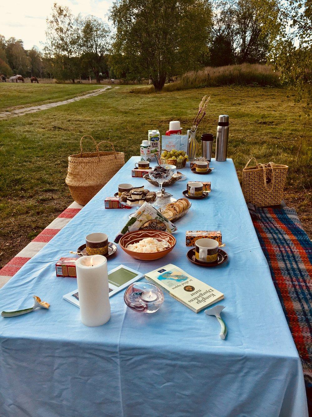 Picknick mitt i staden och mitt i den vilda naturen.
