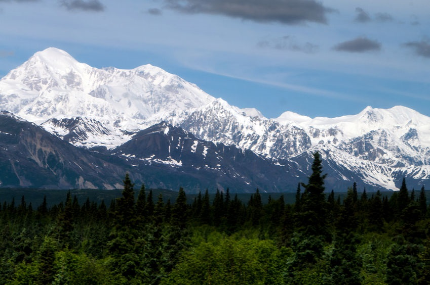 70630281_M_Alaska_Point_Mount_Denali_Trees_National_Park_.jpg