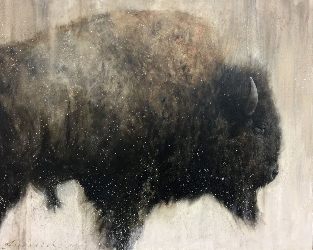 Bison in Profile