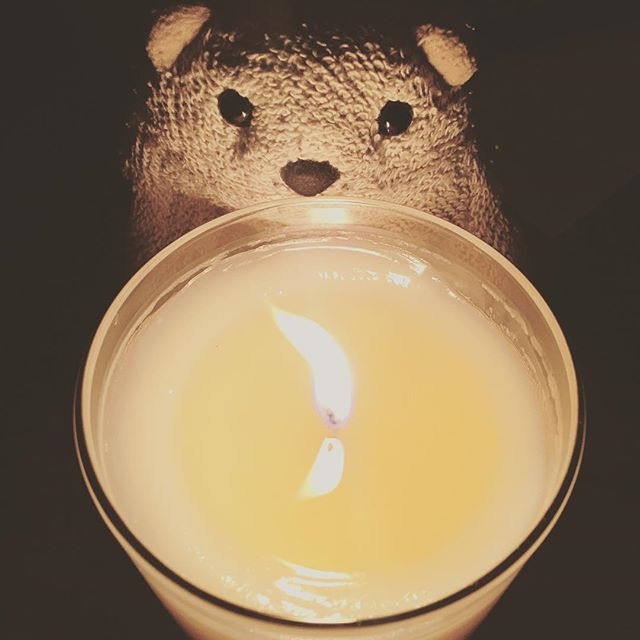 Happy Halloween from our favorite little ghoul to you! 🎃🍂🕯🐻 ...and yes, we took this adorable photo about 4 months ago and have been waiting for Halloween to post it.  #littlebear #mascot #chuck #coconutwaxcandles #igersjax #igersjaxbeach #jaxcreatives #shoplocaljax #ethicalcandles #sustainability #essentialoils