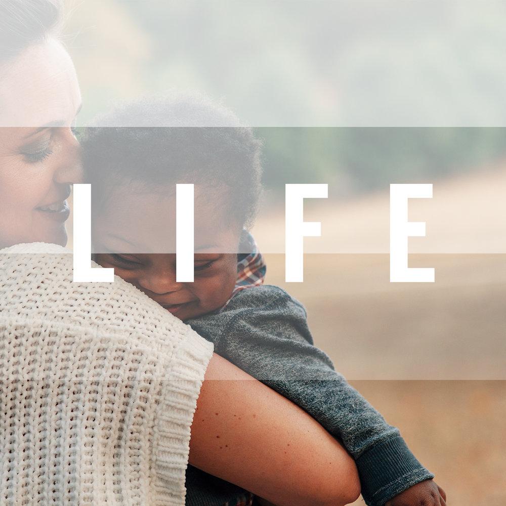 LIFE1 (1) (1).jpg