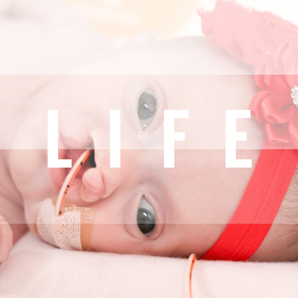 Laura Valdez LIFE.jpg