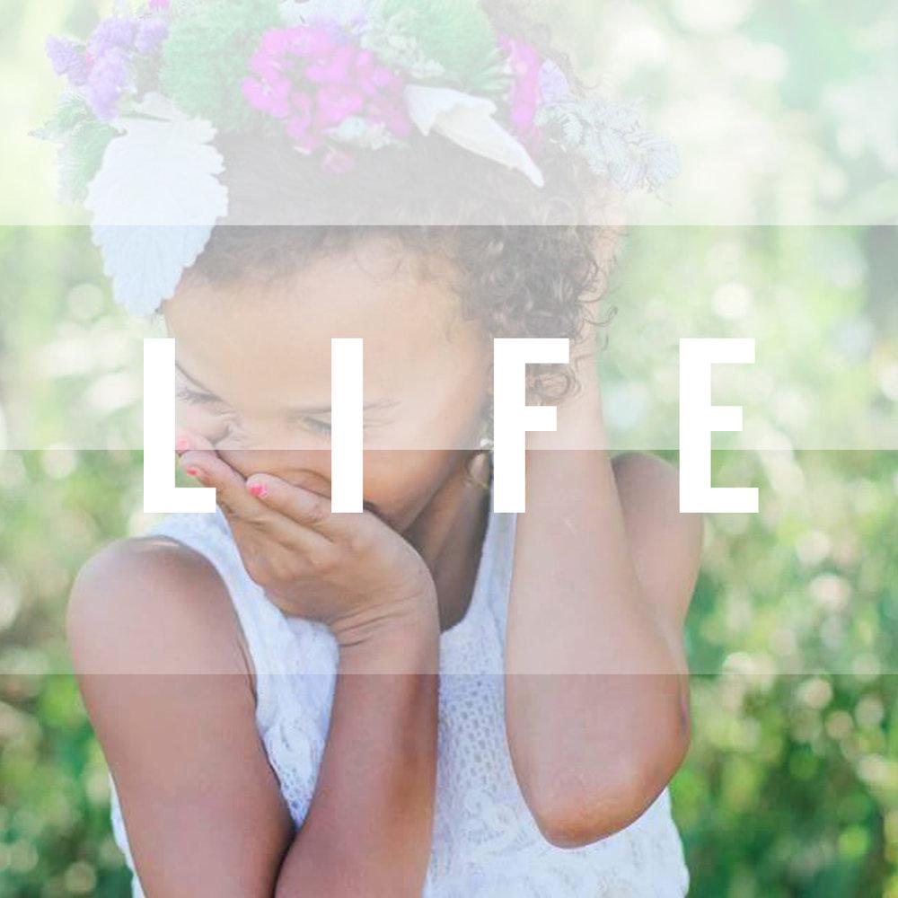 Lauran LIFE (1).jpg