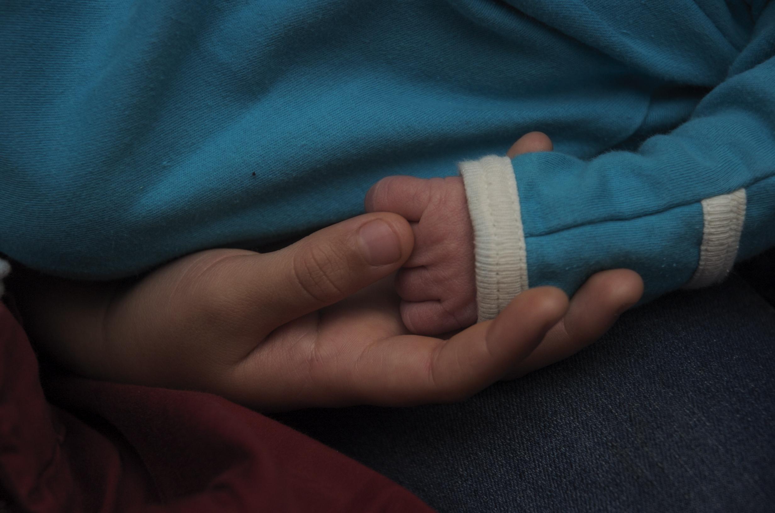 Iris hands