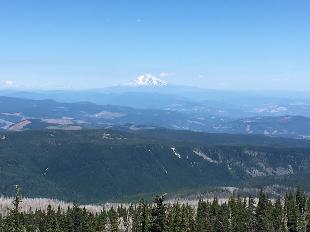 Looking north to Pahto (Mt. Adams)