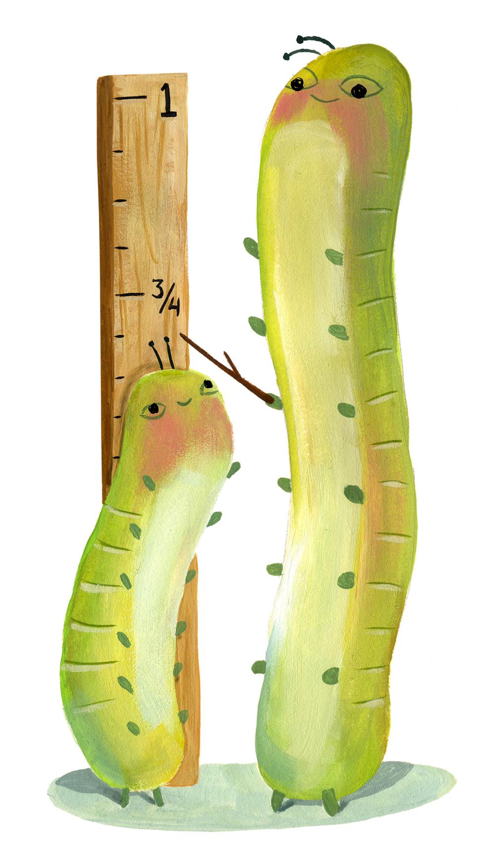 inch_worm.jpg