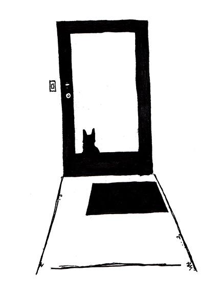cats#2_72door