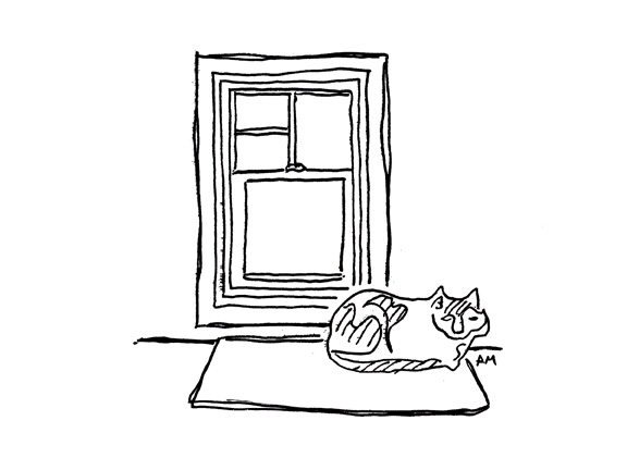 Cats #3 (Window)