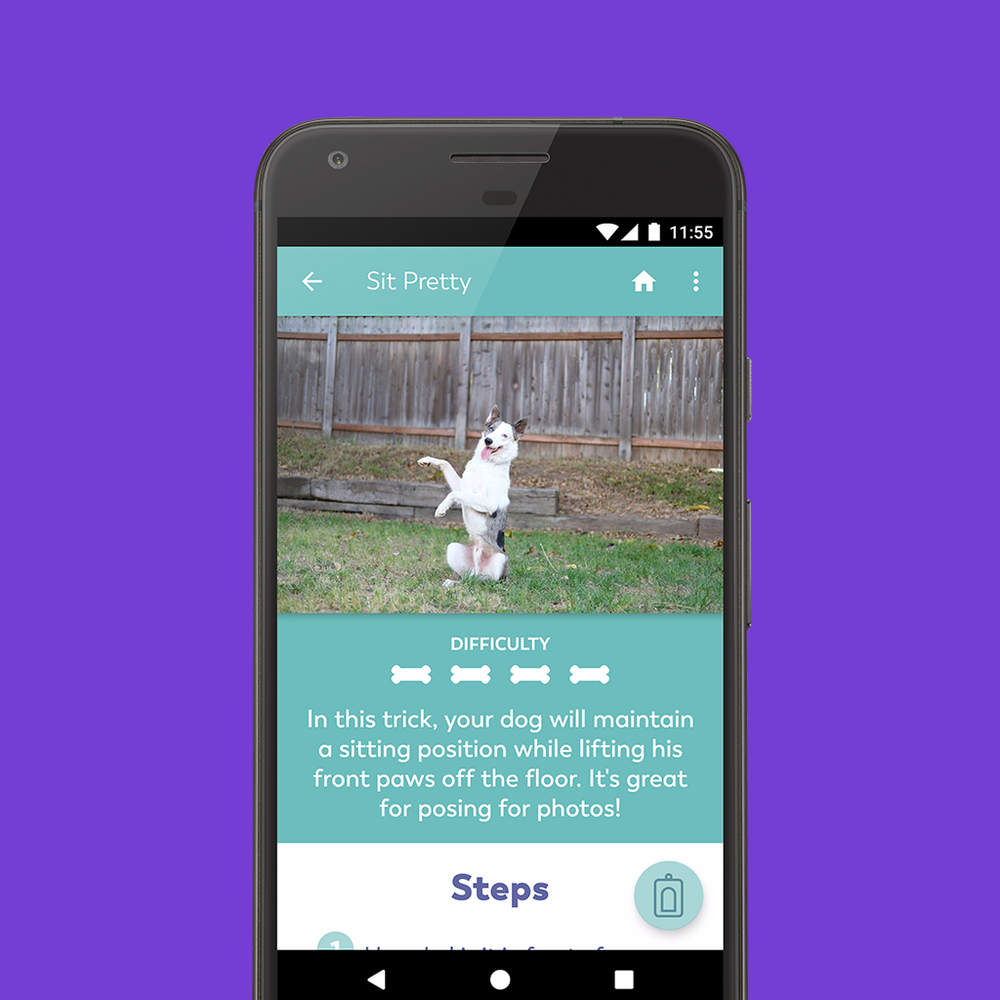 puppr_site_screenshots_android.png