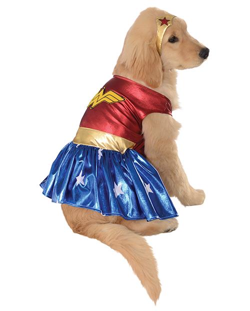 Wonder Dog -