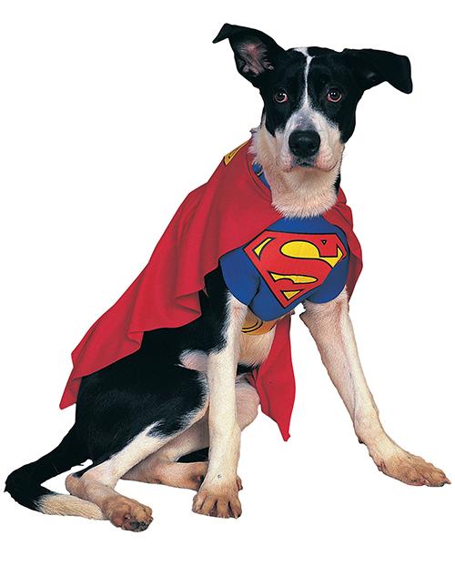 Super Dog -