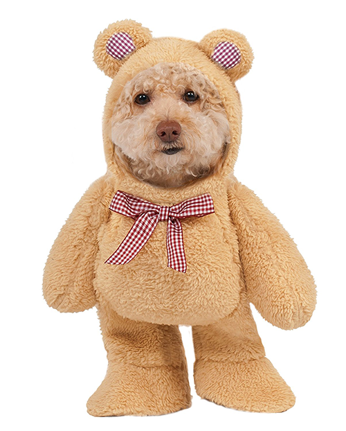 Teddy Bear  -