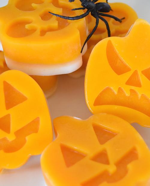 Frozen Pumpkin Jack-O-Lanterns - Barking Botanicals