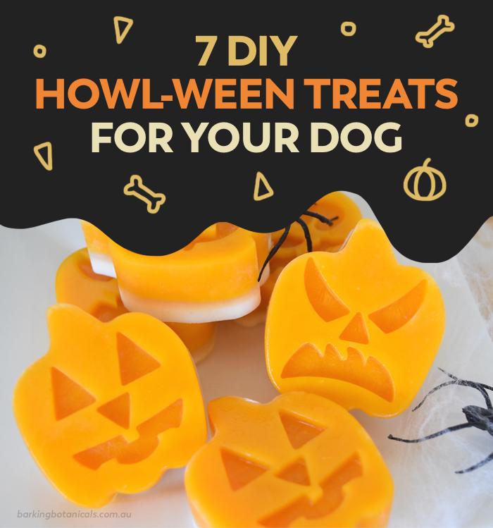 DIY Halloween Treats For Dogs