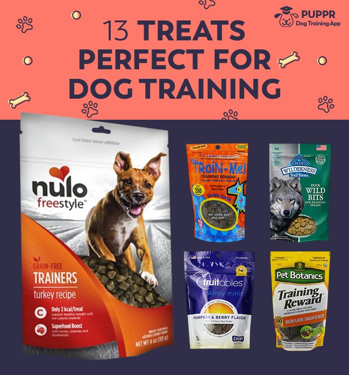 12 Treats Perfect For Dog Training