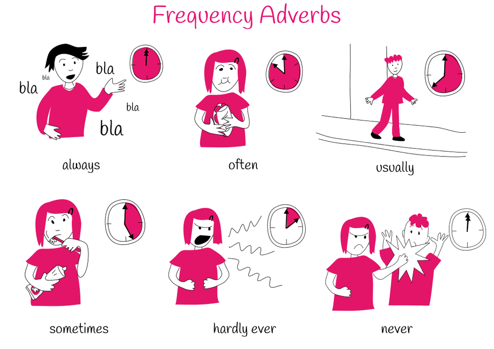 Theme 5: Frequency Adverbs