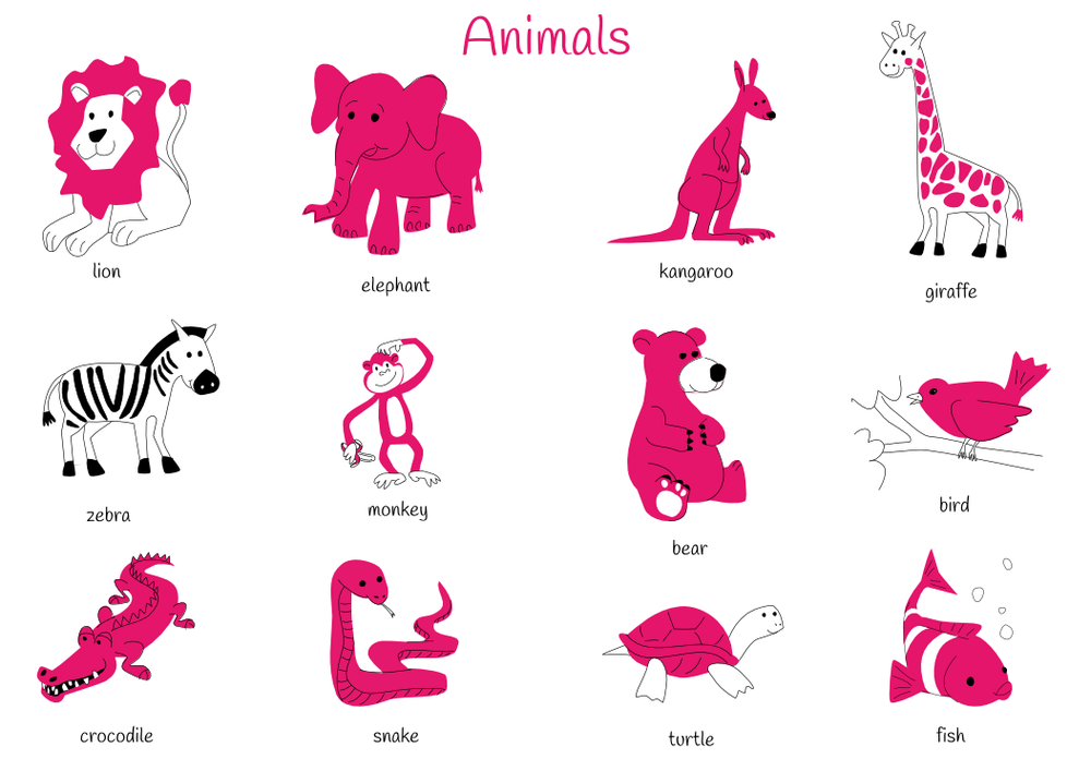 Theme 6: Animals