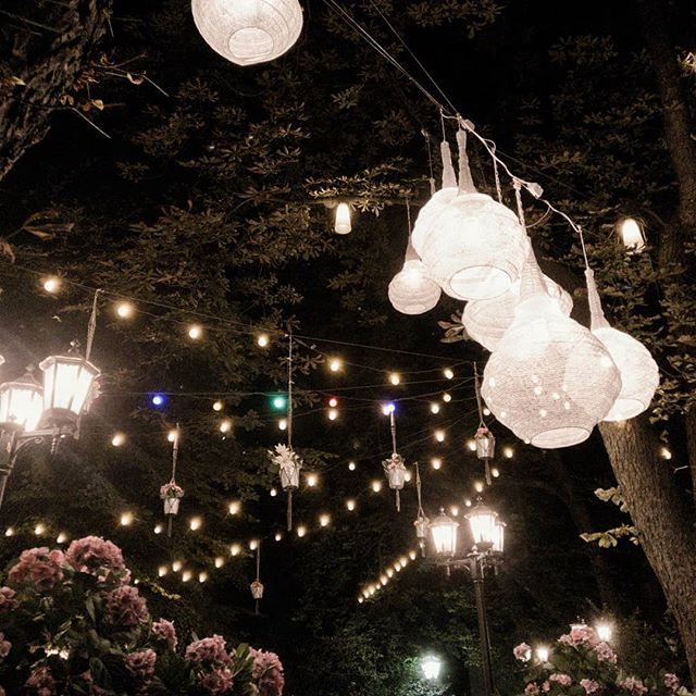 the last week of summer is here and how can that be enjoyed better than with a cold drink in your hands, good music playing and you and your friends dancing outside until the sun goes up? :) #tonicofwildness #summertime #summer2018 #lantern #laterne #lichterketten #lights #light #decor #decoracion #garden #gardendesign #gardenparty #happyme #friendshipgoals #party #enjoylife #graz #igersgraz #ihavethisthingwithgraz #grazerblogger #wirliebengraz #1000thingsinaustria #romantic #weddingdecoration #gardengoals #park #awalkinthepark #stadtpark #österreich
