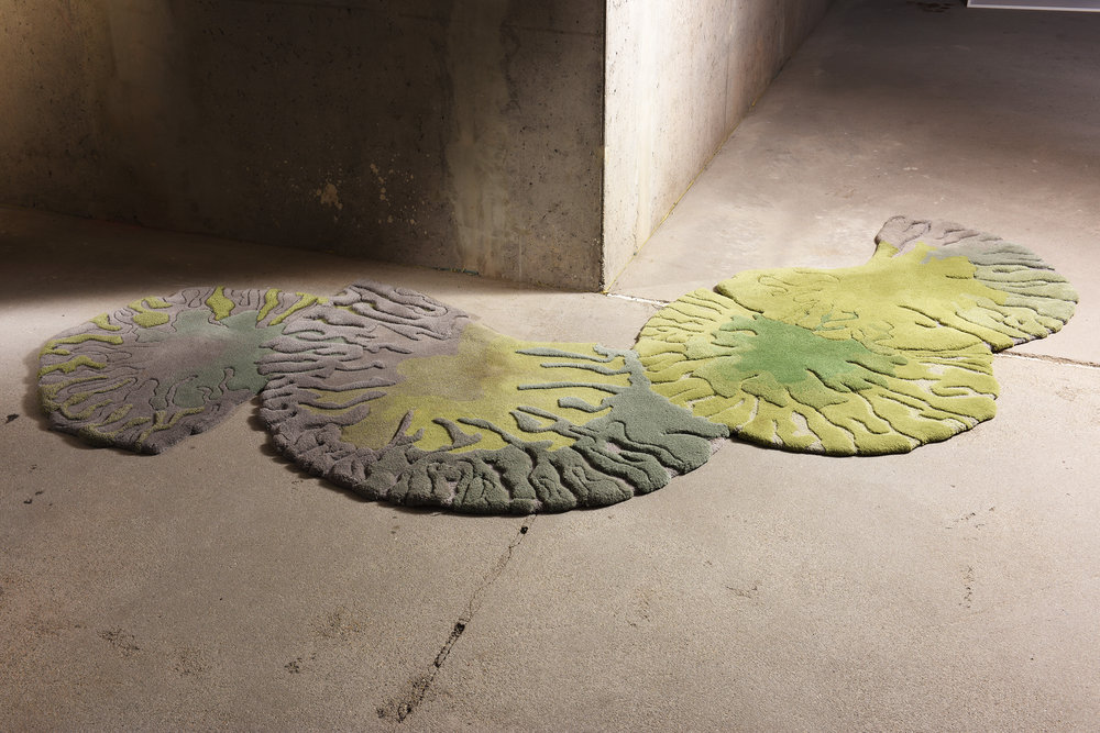 Lichen - Zuzmó - Célközönség: Design iránt fogékony emberekFunkció: Egyedi szőnyegGyártó: Gulyás JuditMéret: 360 cm x 170 cmTechnika: Hand-tufting technikaAnyaghasználat: 100% gyapjú