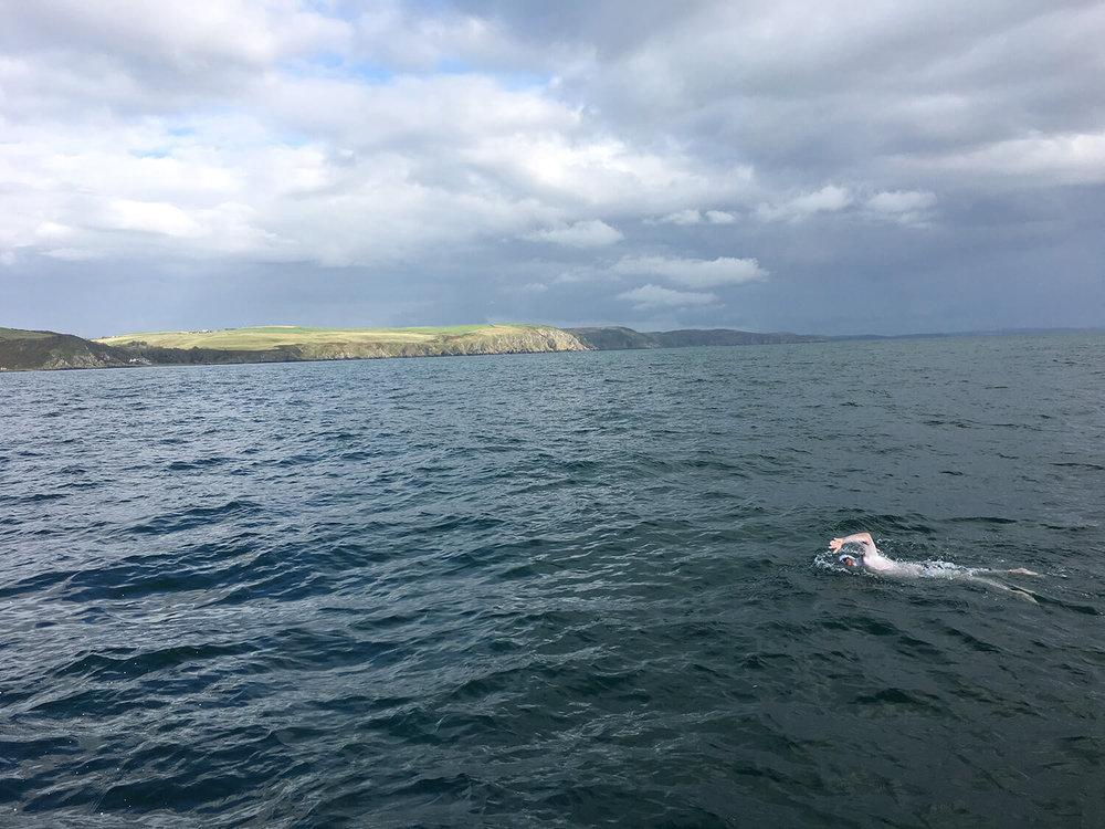 Green cliffs of Scotland