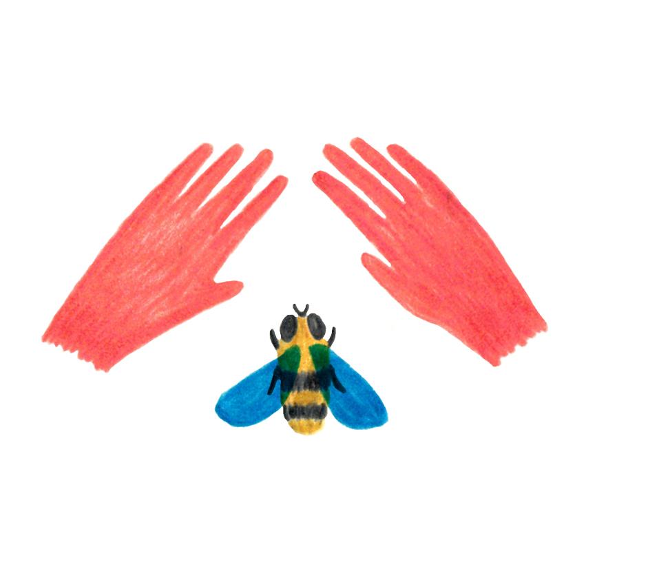 main-abeille.jpg
